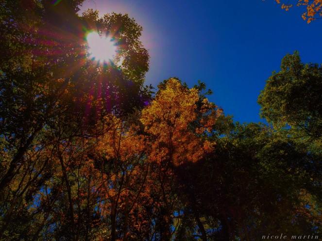 photo-15-10-2016-10-34-47